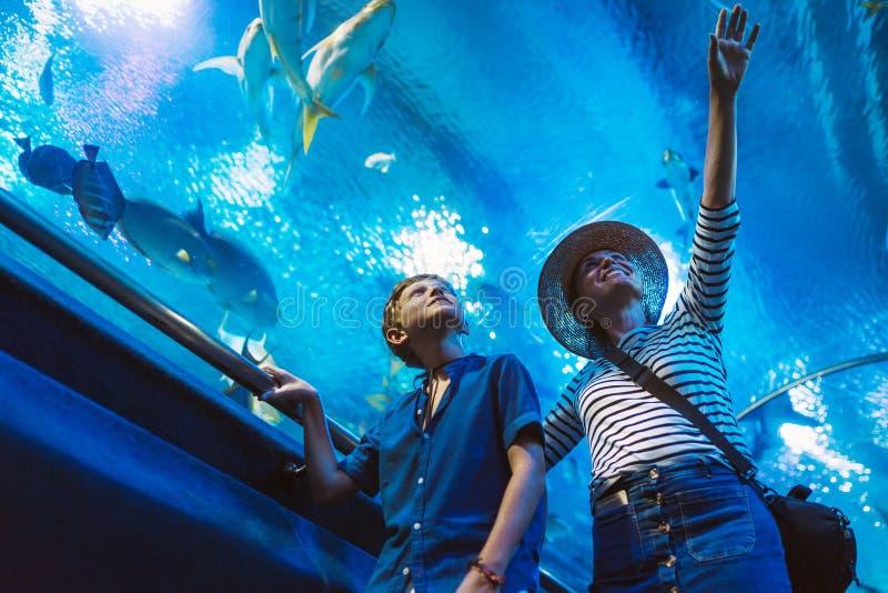 Madre e hijo que caminan en túnel enorme interior del acuario, gozando de los habitantes subacuáticos de un mar, mostrando un int fotografía de archivo libre de regalías