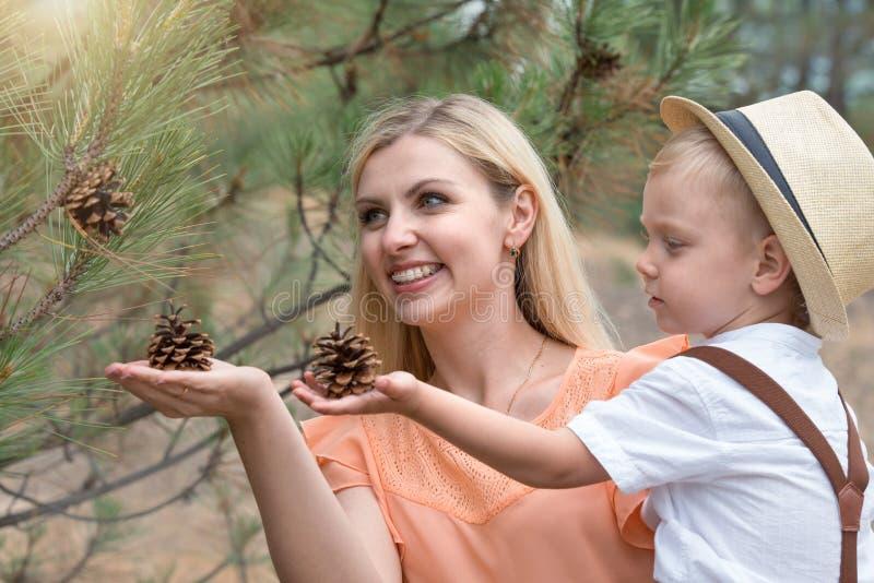 Madre e hijo que recogen conos en forestFamily el ocio fotos de archivo