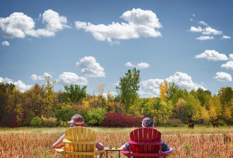 Madre e hijo que se sientan en sillas de jardín con los árboles hermosos de la caída en el fondo imagen de archivo
