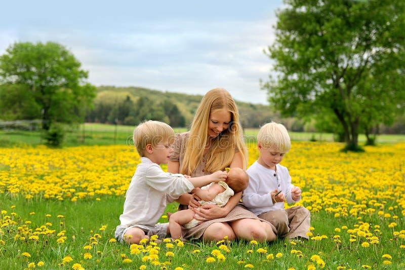 Madre e tre bambini che giocano nel prato del fiore fotografia stock libera da diritti