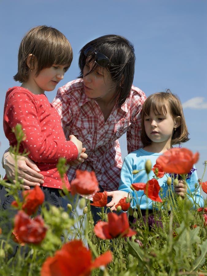 Madre y niños en amapola roja fotos de archivo
