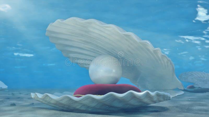 Madreperla subacquee Conchiglia subacquea con l'interno della perla ed il cuscino rosso del velluto Ostriche e perle sul fotografie stock libere da diritti