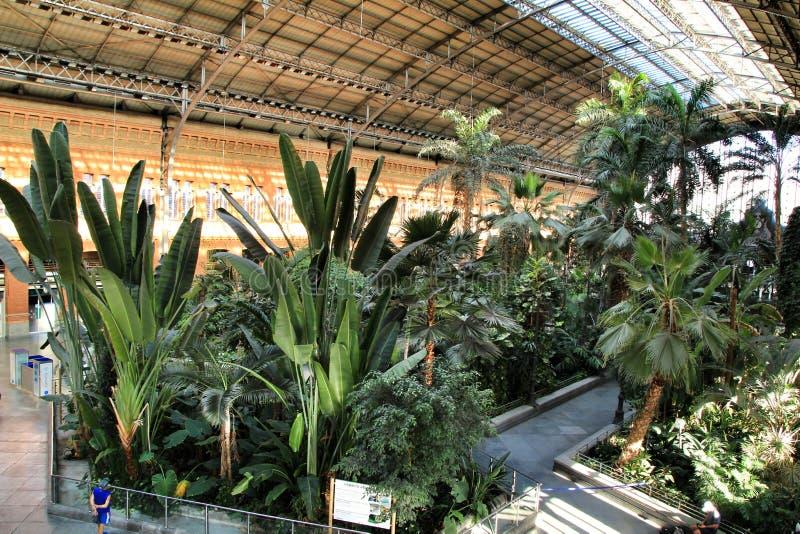 Beautiful Atocha railway station in Madrid stock photo