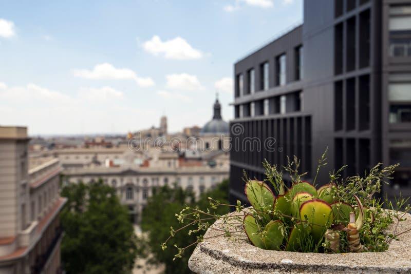 2017 05 31 Madrid, Spanien arkitektur spain Arkitektur av Madrid arkivbild