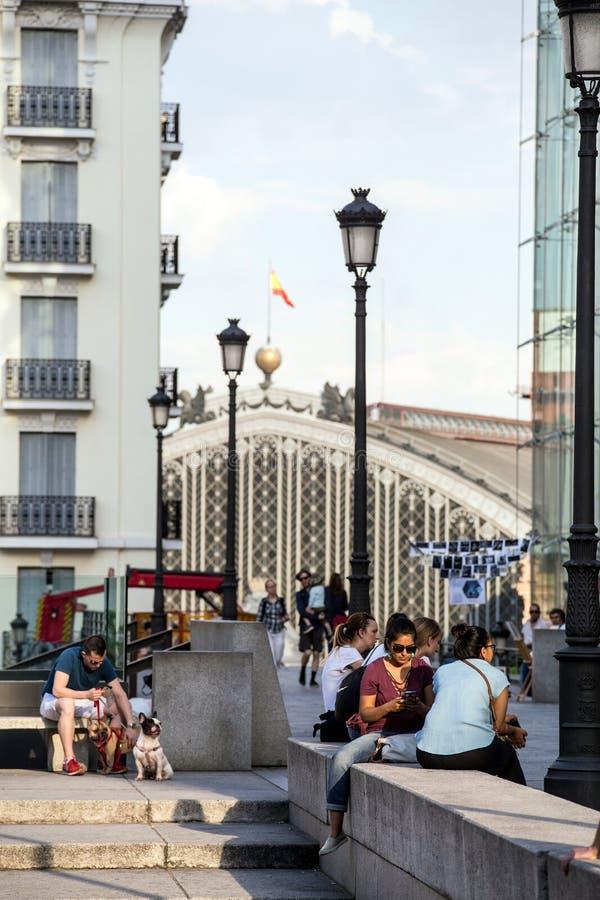 2017 31 05 Madrid, Spanien En man med hans hundkapplöpningläsebok på bänken arkivfoton
