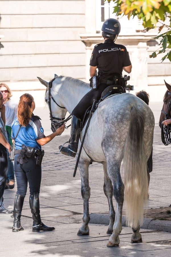 MADRID SPANIEN - SEPTEMBER 26, 2017: Den monterade polisen i mitten Kopiera utrymme för text tillbaka sikt royaltyfria foton