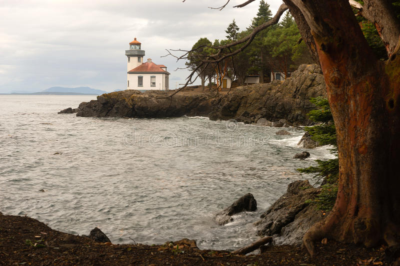 Madrona Tree Lime Kiln Lighthouse San Juan Island Haro Strait. A storm is brewing as this strong Madrona Tree frames Lime Kiln Lighthouse on San Juan Island royalty free stock photo