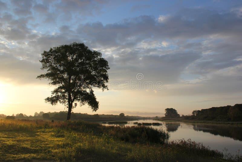 Madrugada en el río fotografía de archivo
