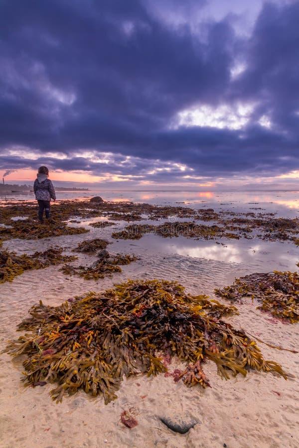 Madrugada en la playa fotografía de archivo libre de regalías