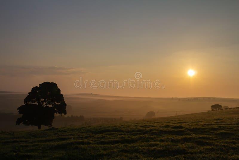 Madrugada en Northumberland rural Reino Unido fotografía de archivo