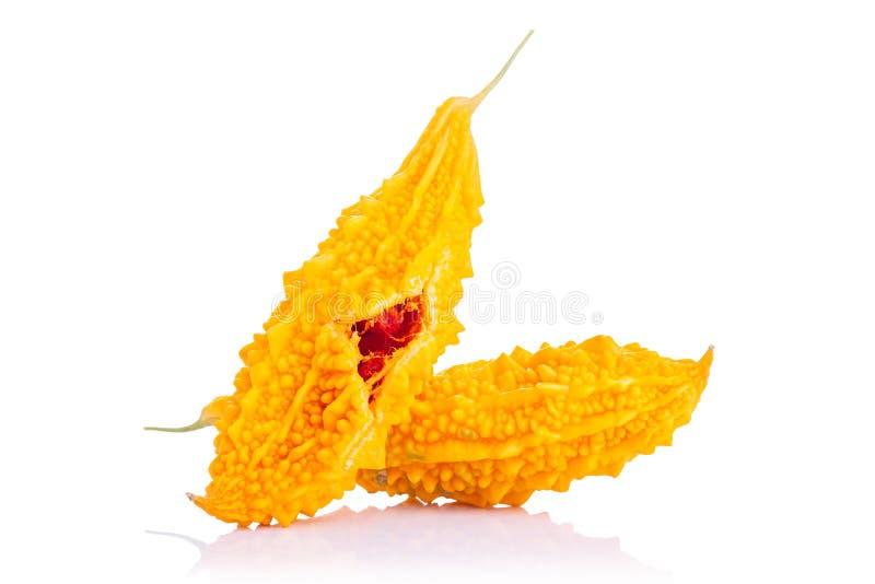 Maduro do pepino amargo amarelo ou da cabaça amarga Tiro do estúdio isolado no branco imagem de stock