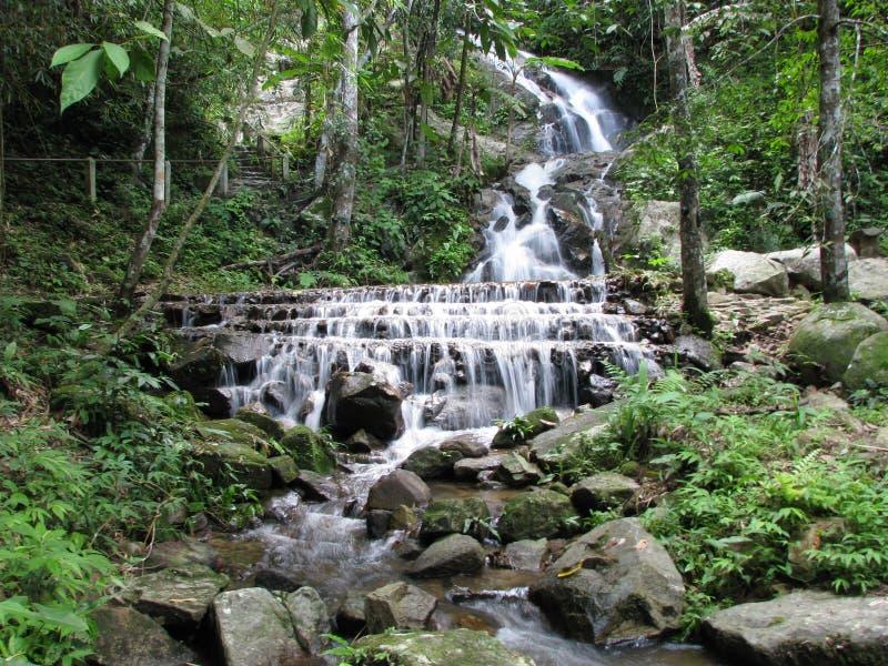 Mae Kampong Waterfall. Photo of the Mae Kampong Waterfall near the flight of the gibbon, Chiang Mai royalty free stock photo