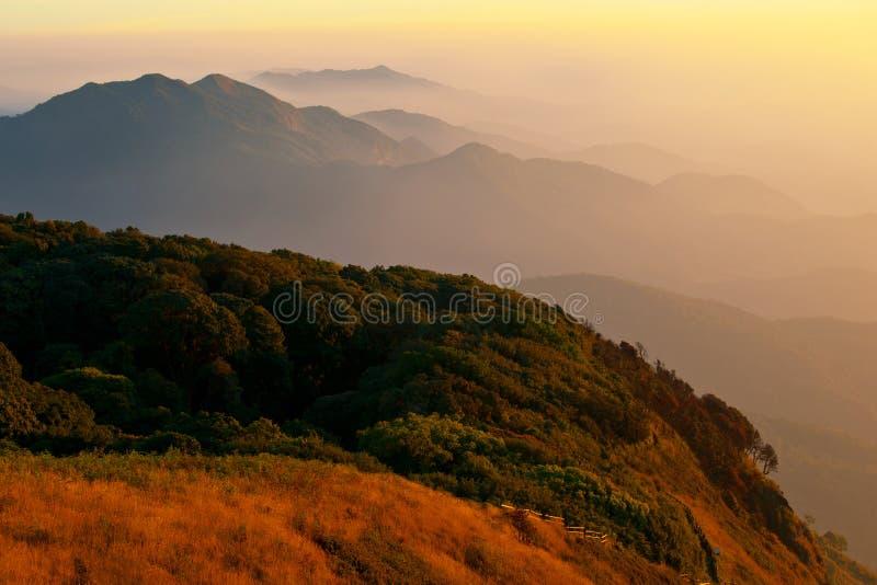 mae kew inthanon doi готовят tropics стоковое фото