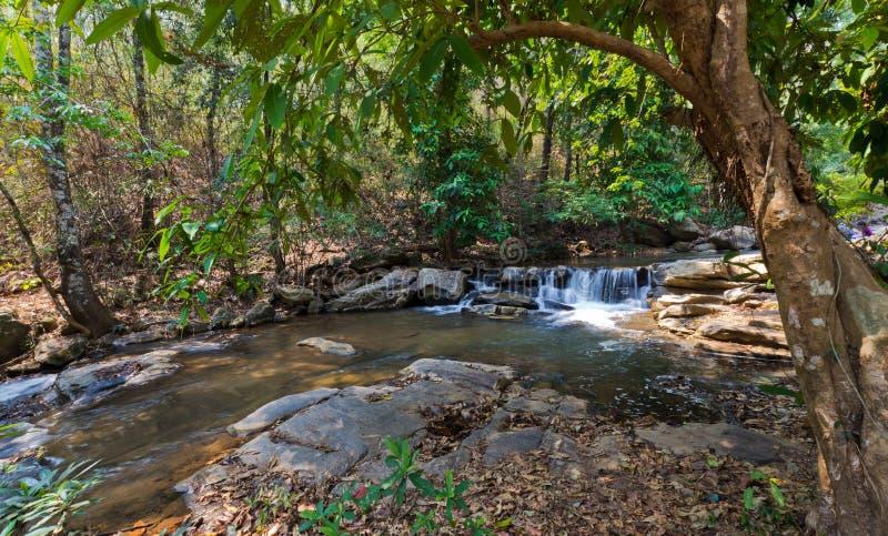 Mae Sa Waterfall, Thaïlande photos stock