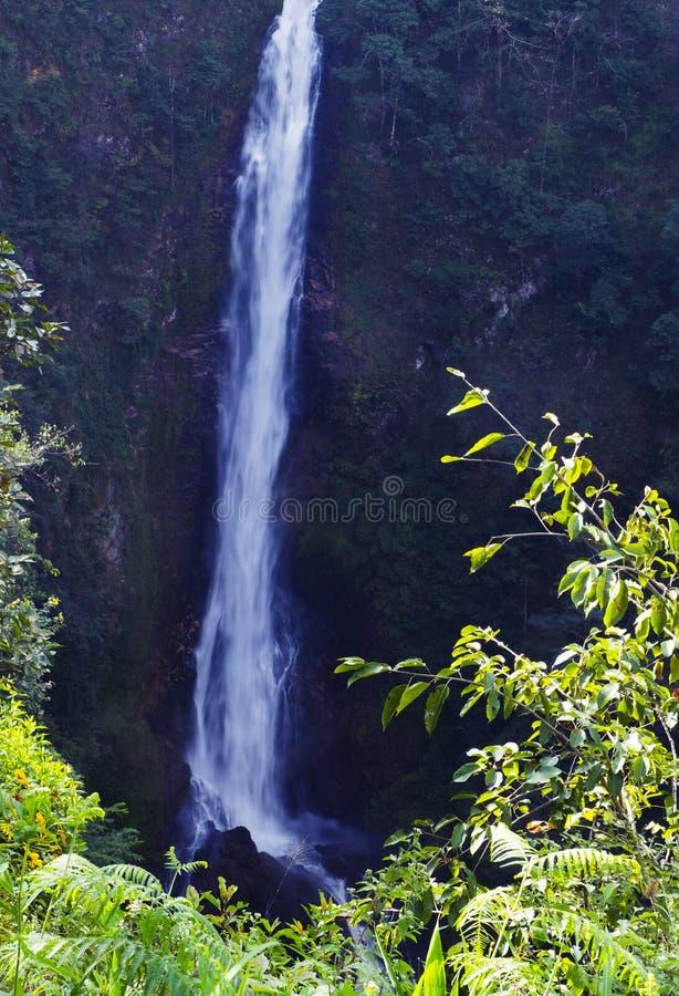 Mae Surin Waterfall 2 photos stock