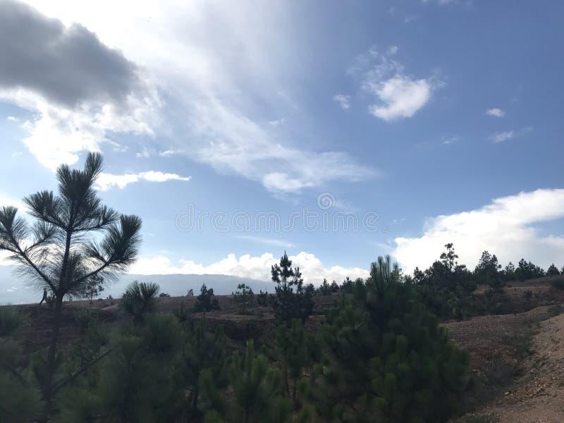 Maestà della natura, Villa de Leyva, Colombia fotografia stock libera da diritti