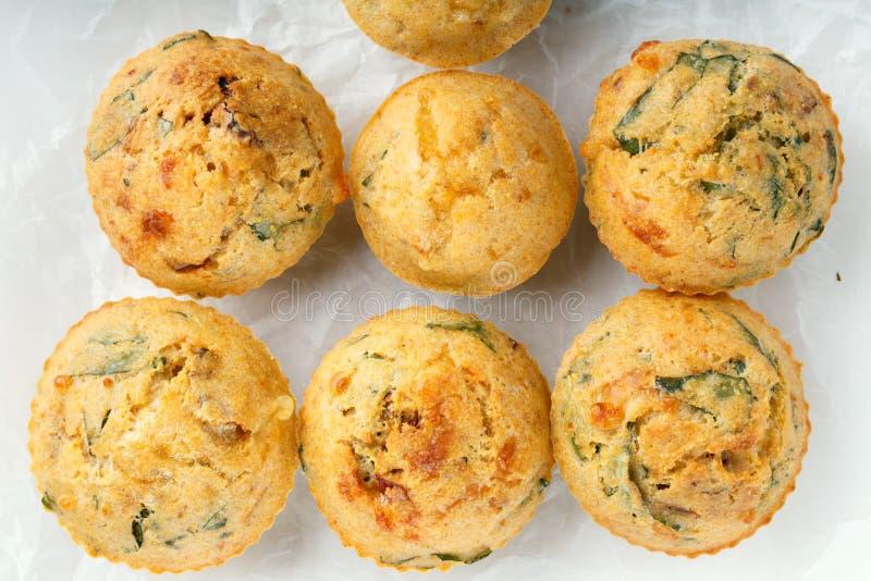 Maffins saborosos do queijo com manjericão e o tomate sol-secado imagens de stock royalty free