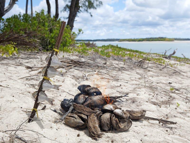 Mafia Island. Grilling fish in untouched nature at Mafia Island in Tanzania stock photos