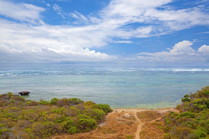 Mafia Island. Untouched nature at Mafia Island in Tanzania royalty free stock photography