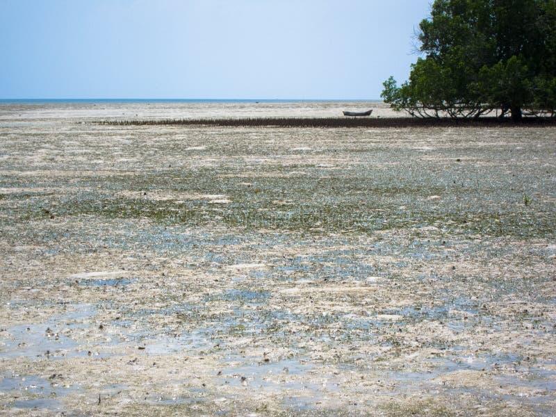 Mafia Island Tanzania. A lone boat at low tide on Mafia Island, Tanzania royalty free stock photos