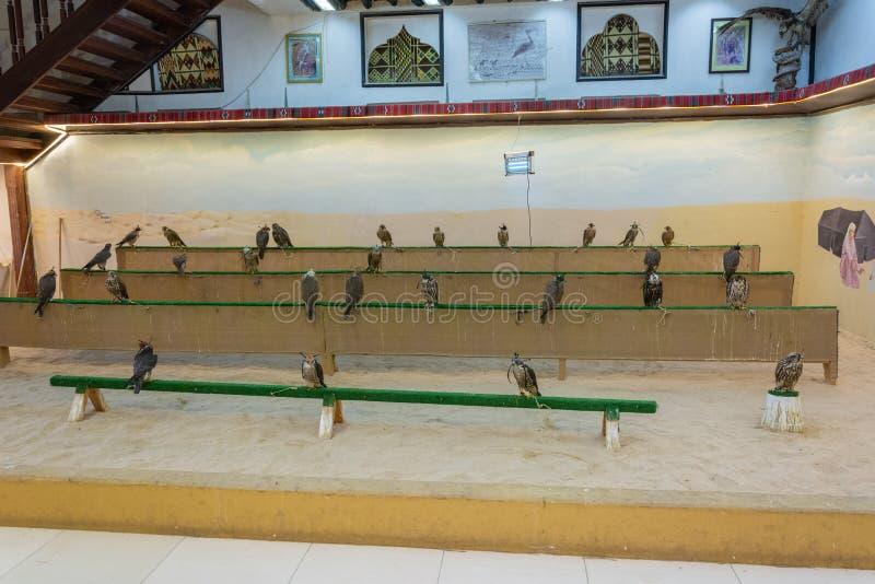 Magasin de faucon au faucon Souq dans Doga, Qatar photographie stock libre de droits