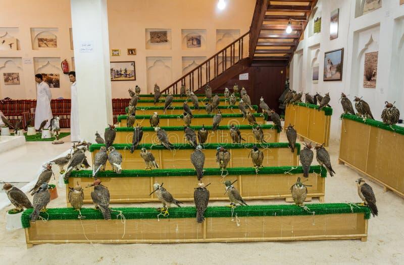 Magasin de faucon au faucon Souq dans Doga, Qatar images libres de droits