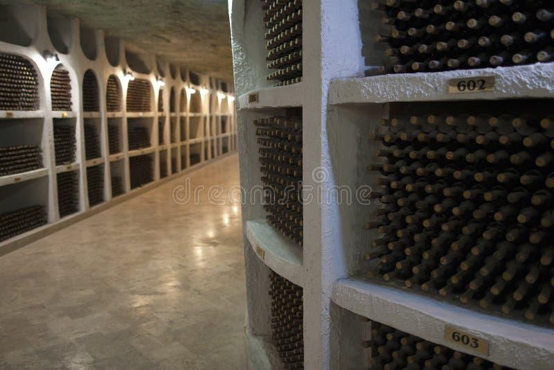 Magazyn wino butelki w wino lochu fotografia royalty free