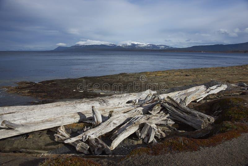 Magellan cieśnina w Patagonia, Chile obraz royalty free