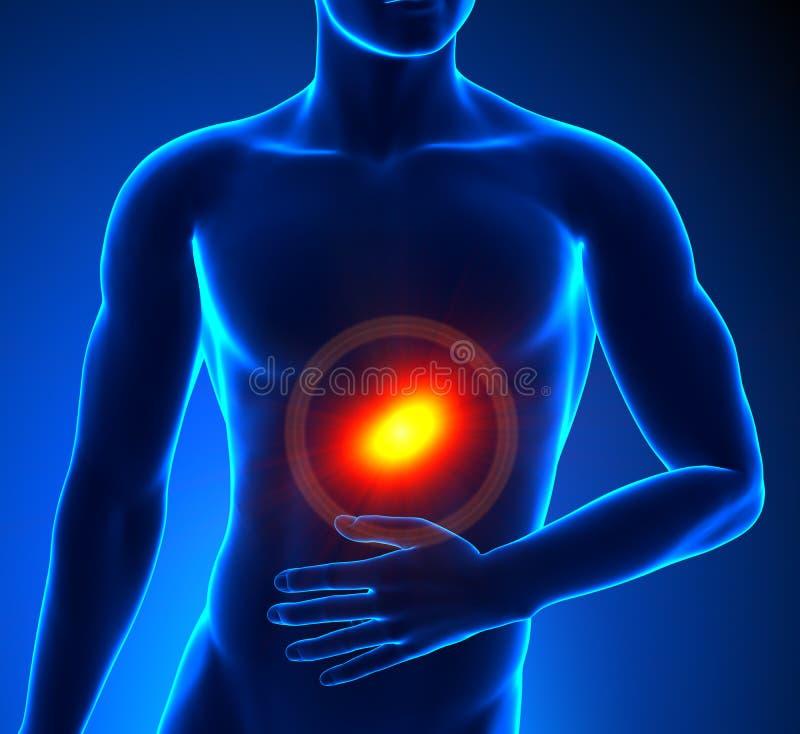 Magen smärtar stock illustrationer