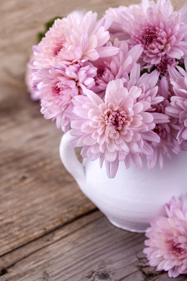Magenta flowers. In a white vase on a wooden board stock photo