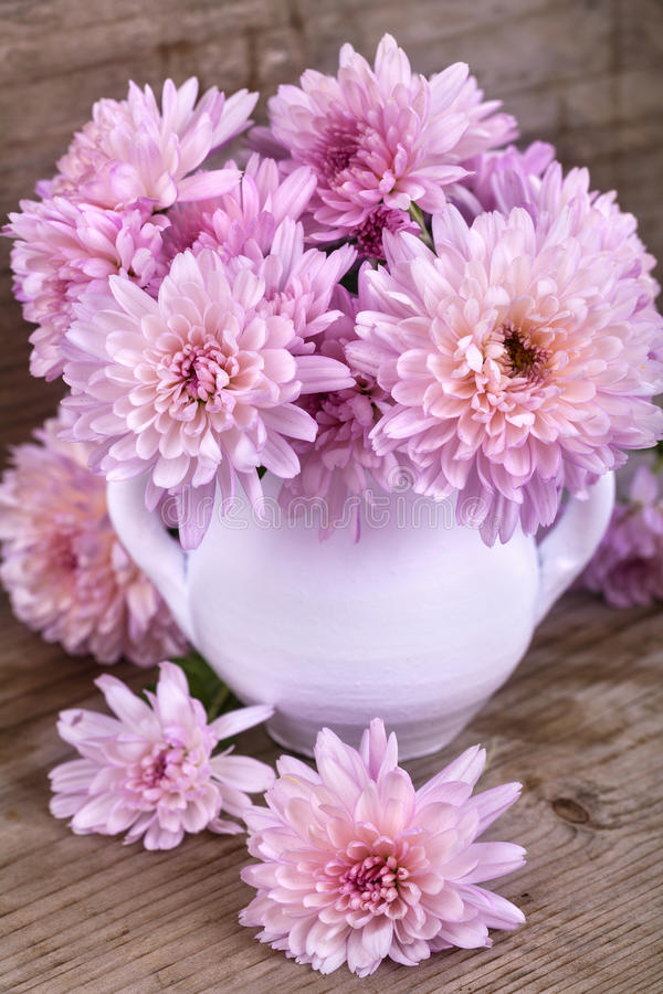 Magenta flowers. In a white vase on a wooden board royalty free stock photography