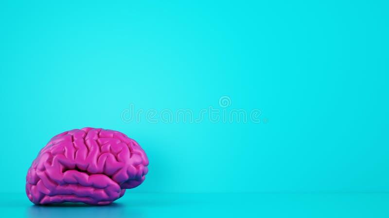 Magenta-kleurenbrein op cyaan achtergrond Medisch begrip 3D Rendering royalty-vrije illustratie