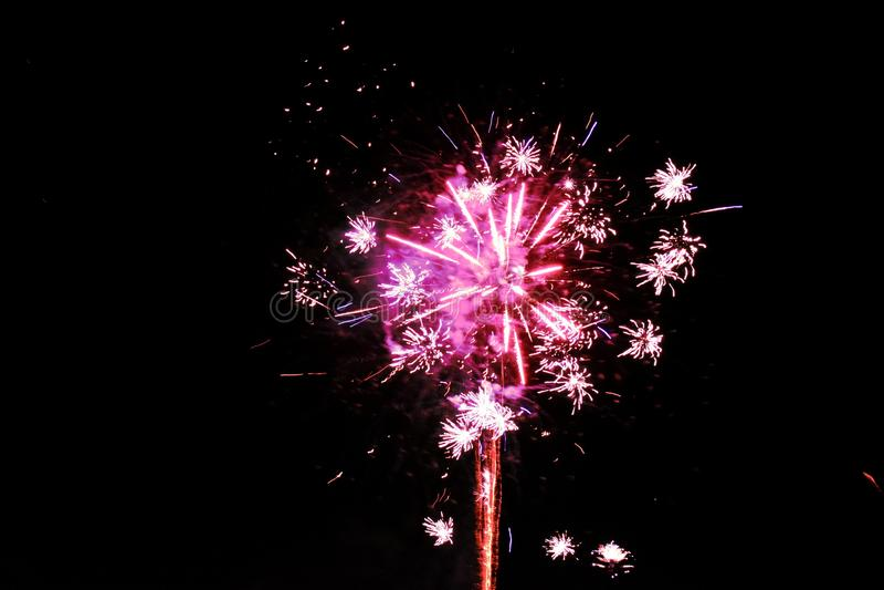 Magenta różowi fajerwerki odizolowywający na ciemnym nocy tle zdjęcia royalty free