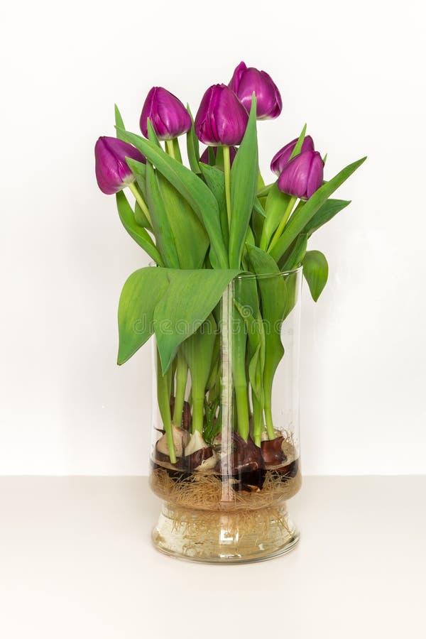 Beautiful Vase Decor
