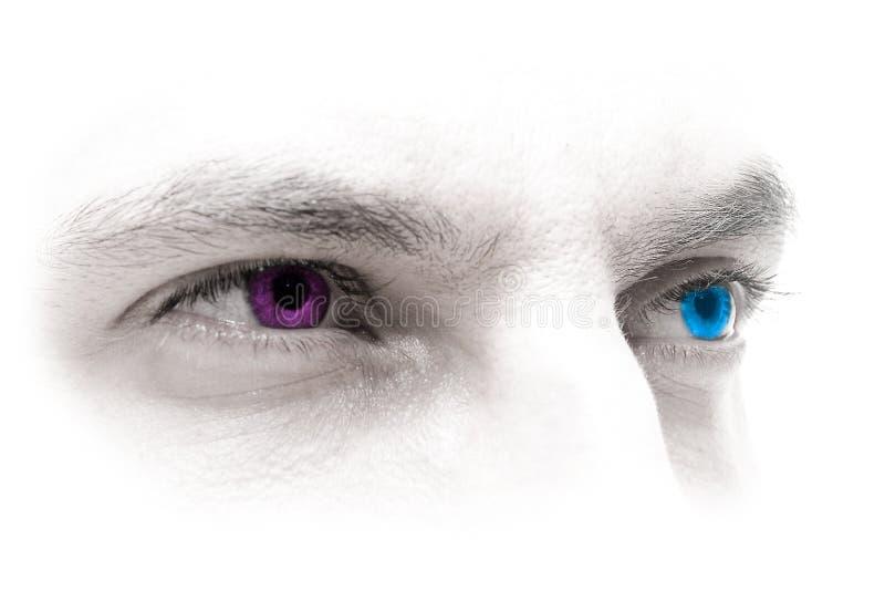 magentafärgade blåa ögon arkivbild