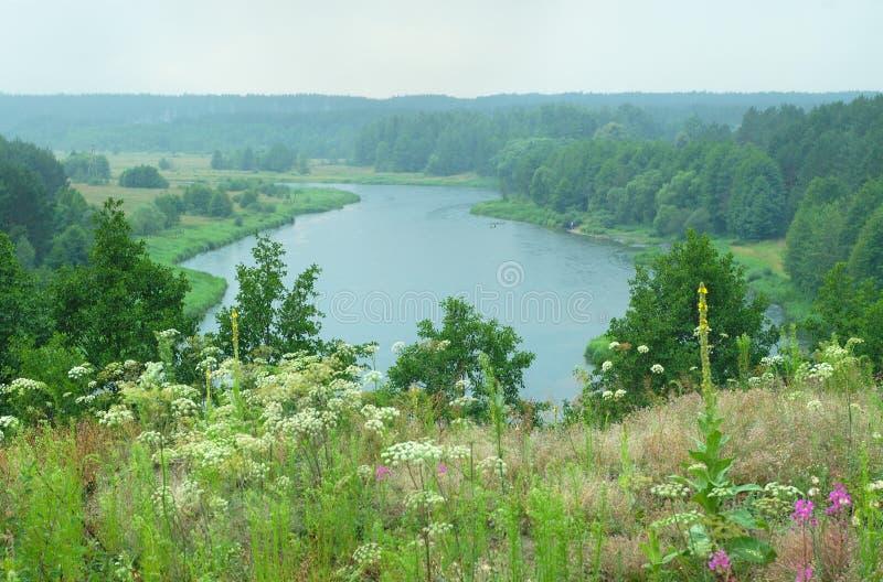 Maggio sul fiume. fotografia stock libera da diritti