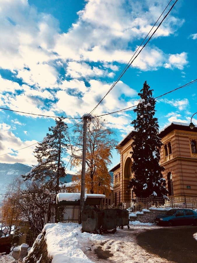 Magia dell'inverno fotografia stock libera da diritti