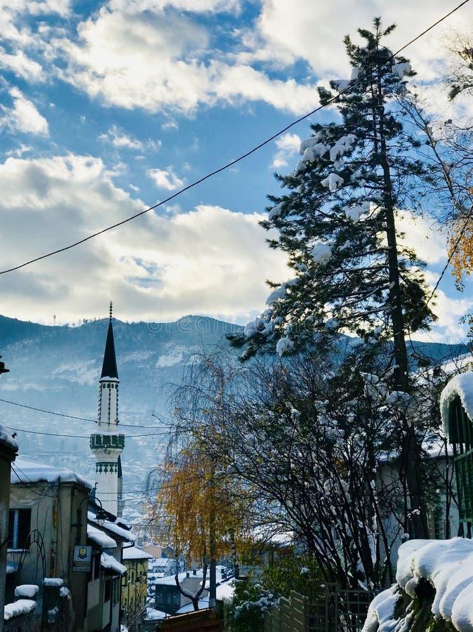 Magia dell'inverno fotografia stock
