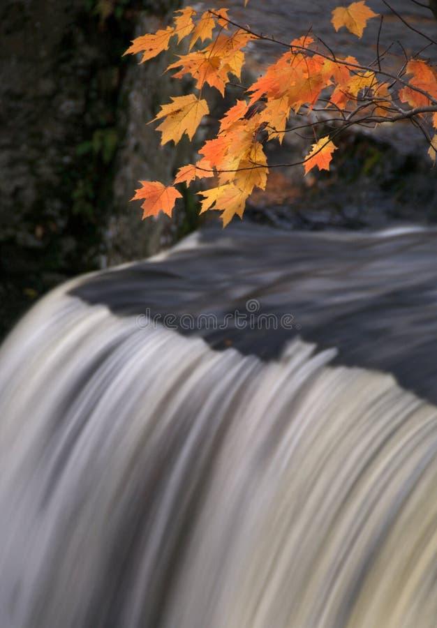 Magia IV del otoño imagenes de archivo