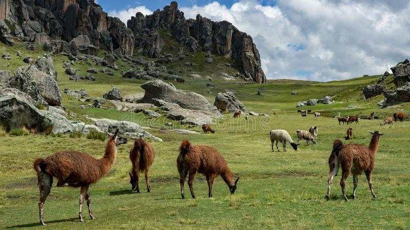 Magia Peru zdjęcia stock