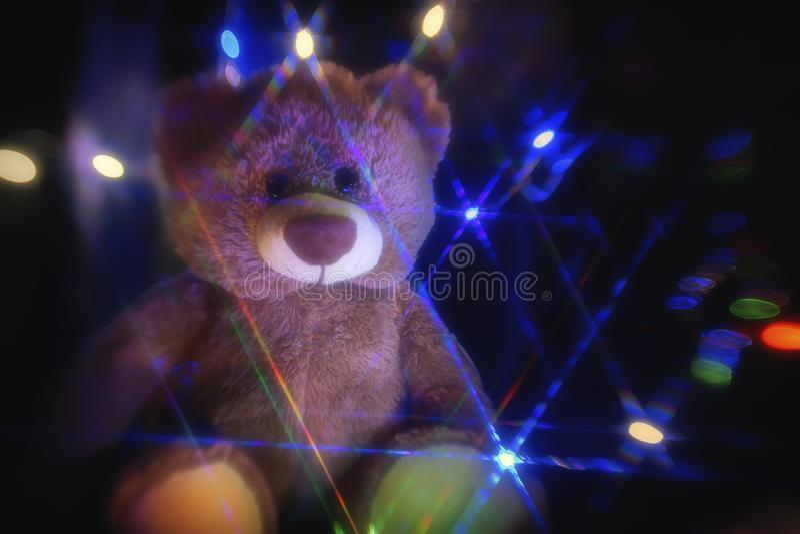 Magia Tedy niedźwiedź obrazy royalty free