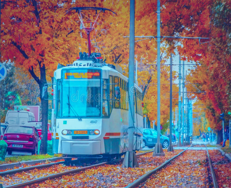 The magic of autumn in Bucharest on tram line 1 stock photo