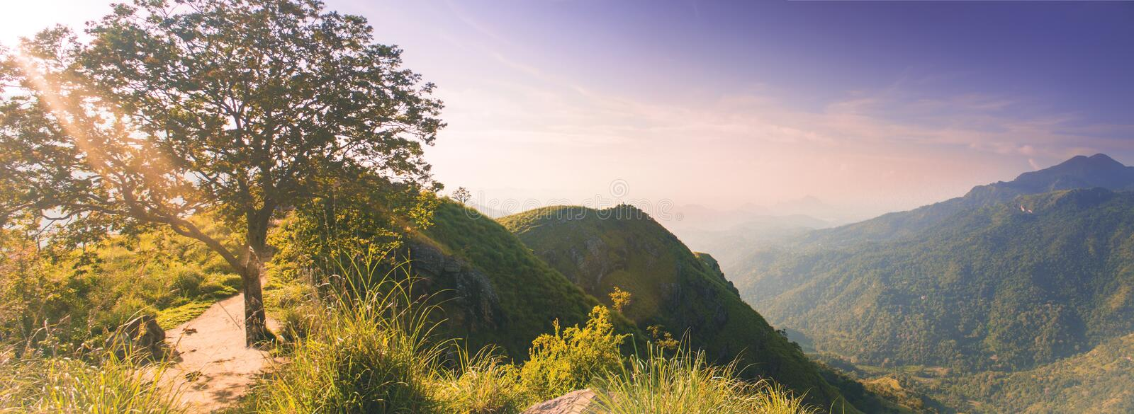 Magic beautiful panorama from little Adams peak at Sri Lanka. Fresh nature background. High mountain with trees, blue sky. Magic beautiful view from little stock photography
