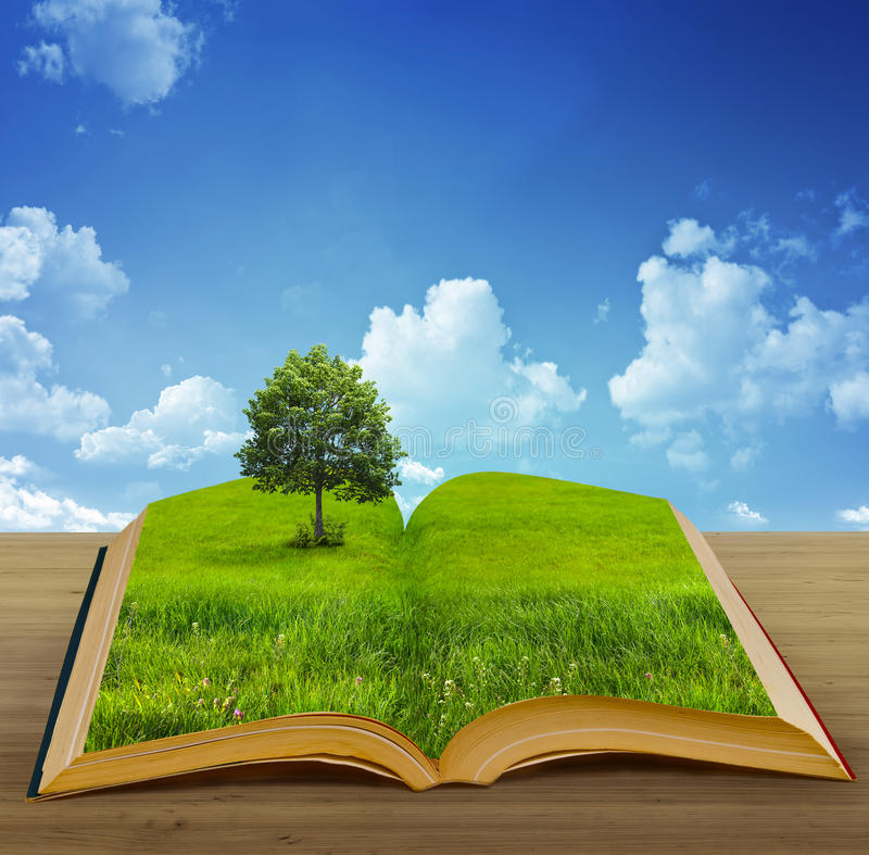 Magic book vector illustration