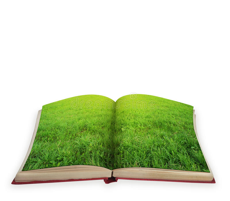 Magic book concept isolated. Magic book concept with green grass isolated royalty free stock photo