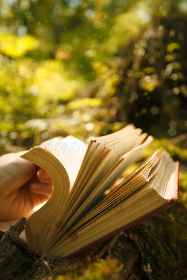 Magic book glowing with yellow lights against the beautiful green forest, mystery, spiritual closeup. Magic book glowing with yellow lights against the stock photo