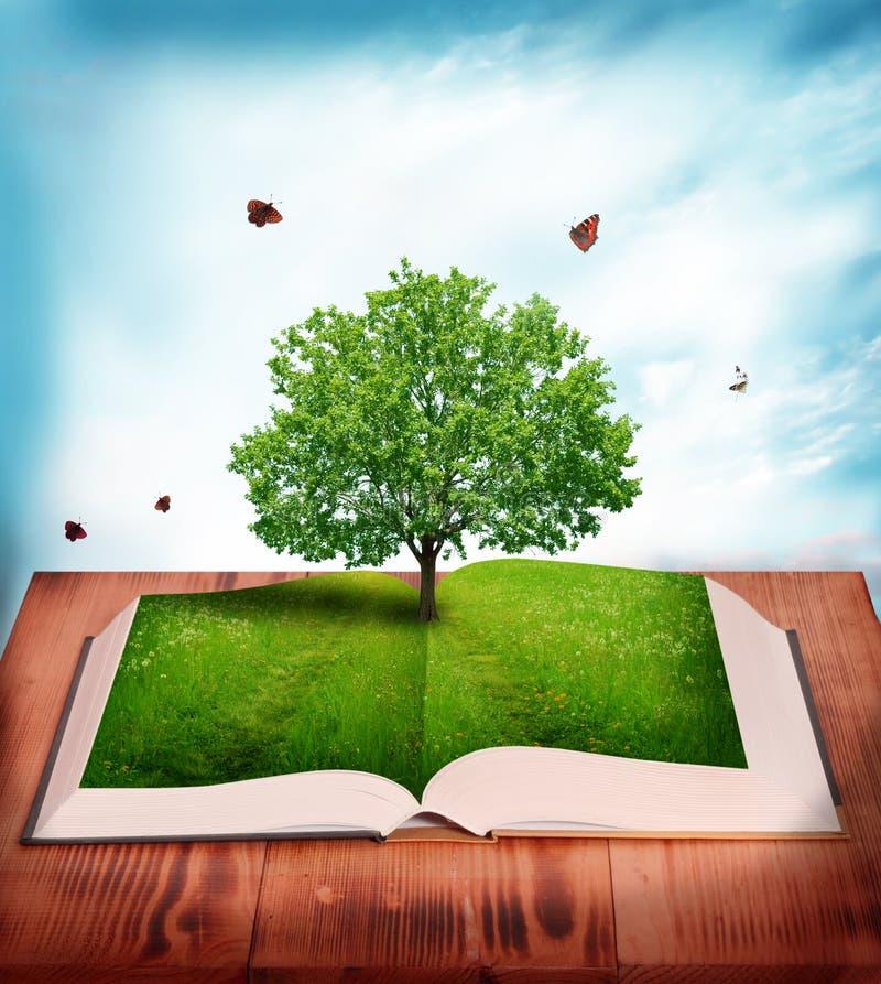Magic book. Open magic book of nature royalty free stock photography