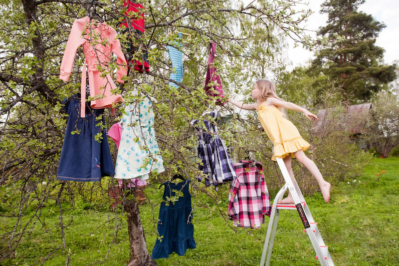 Download Magic Choice Of Dresses Stock Image - Image: 24977581