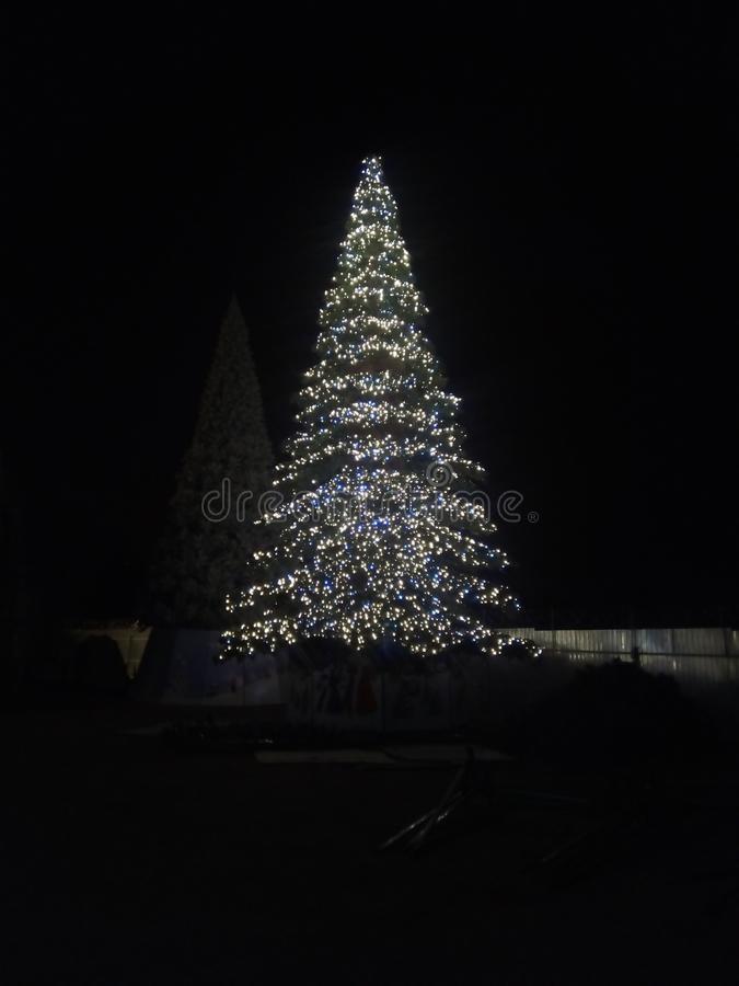 Magic christmas tree 14 meters royalty free stock photos