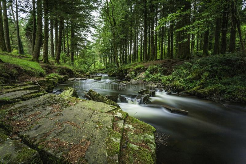 The Magic of the Forest. The awe and the appearance surrounding this waterfall trickling its way from the top of the hill gives it a sense of magic. A beautiful royalty free stock photo